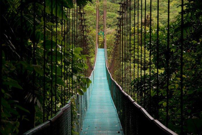 a hanging bridge in the costa rican jungle