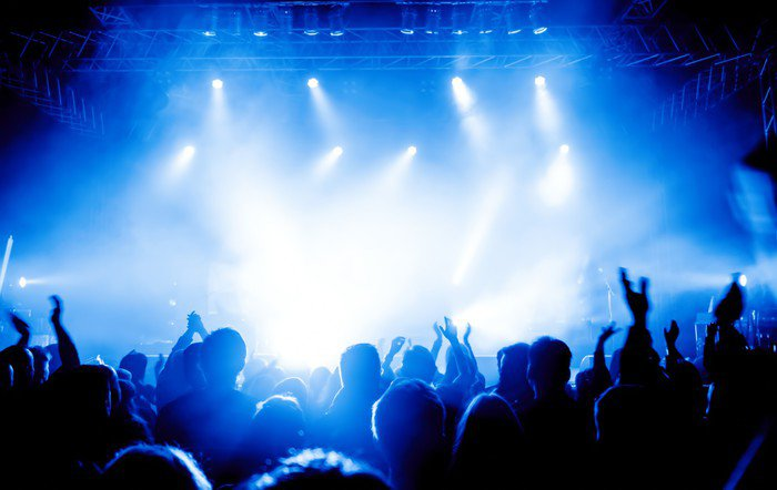 Cheering crowd at concert vinyl wall mural pixers we for Audience wall mural