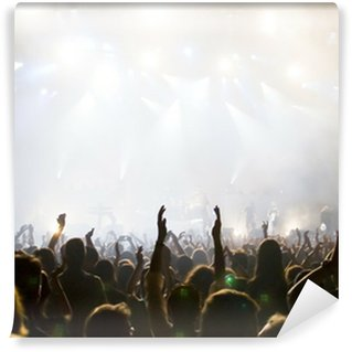 Hockey crowd vinyl wall murals pixers we live to change for Audience wall mural