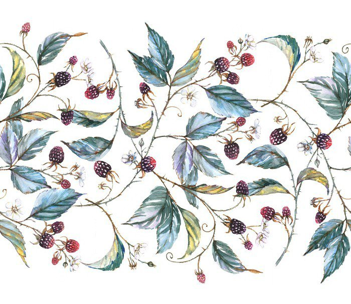 Hand-drawn watercolor seamless ornament with natural motives: blackberry branches, leaves and berries. Repeated decorative illustration, border with berries and leaves