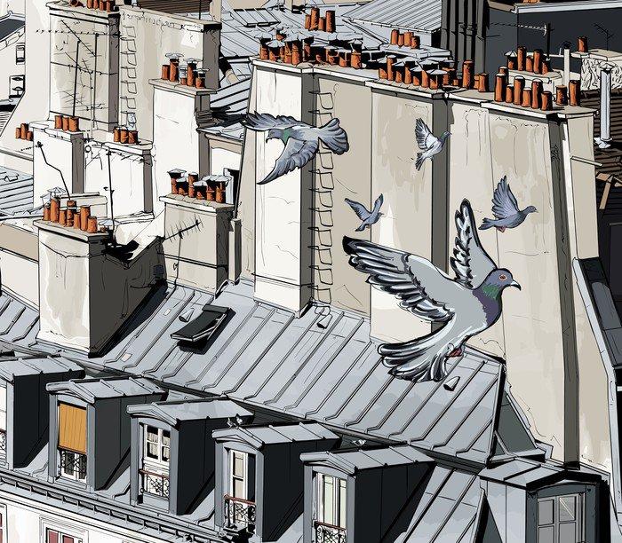 roofs in Paris