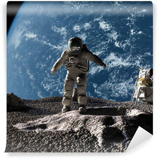 Moon vinyl wall murals pixers we live to change for Astronaut wall mural