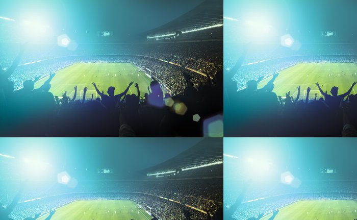 Vinyl Wallpaper crowded football stadium -