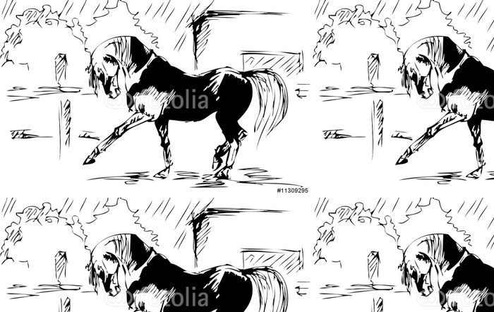 Vinyl Wallpaper Horse spanish step - vector sketch - International Celebrations
