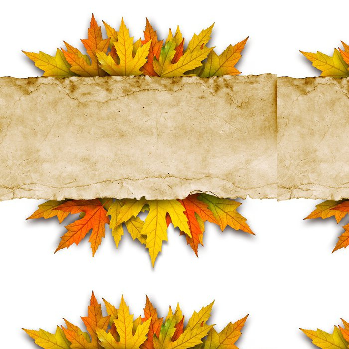 Vinyl Wallpaper leaves and old paper - Business Concepts