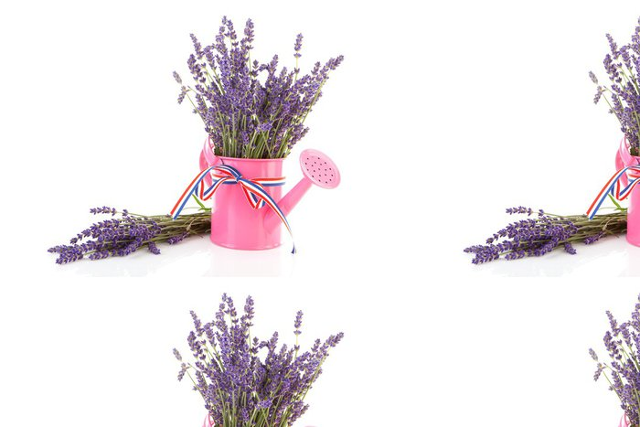 Vinyl Wallpaper pink watering can with plucked lavender over white background - Flowers