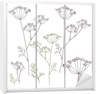 Dill or fennel flowers and leaves. Wardrobe Sticker