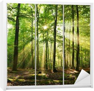 Forest Wardrobe Sticker