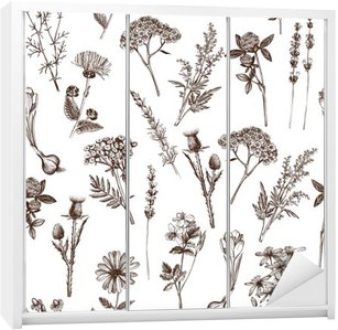 vector seamless pattern with ink hand drawn medicinal herbs sketch Wardrobe Sticker