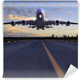 Washable Wall Mural airplane landing 3D illustration
