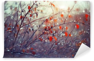 background with branches and raindrops Washable Wall Mural