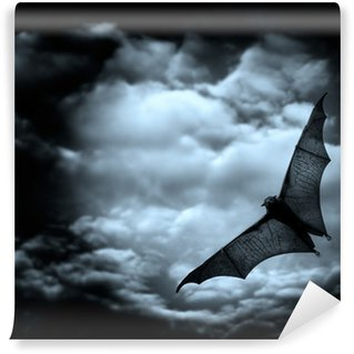 Washable Wall Mural bat flying in the dark cloudy sky