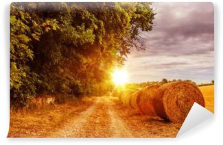 Countryside Summer Road Washable Wall Mural