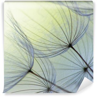 Washable Wall Mural dandelion seed