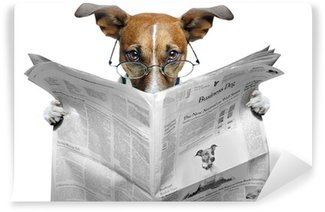 Washable Wall Mural dog reading a newspaper