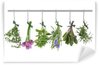 Washable Wall Mural Herbs Hanging and Drying