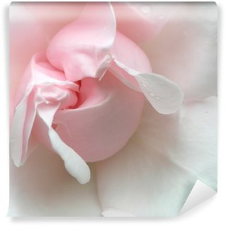 Washable Wall Mural pink rose
