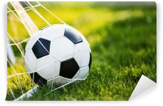 Soccer ball in the goal Washable Wall Mural