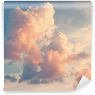 Sunny sky background in vintage retro style Washable Wall Mural