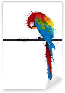 Washable Wall Mural vector parrot parakeet, graffiti