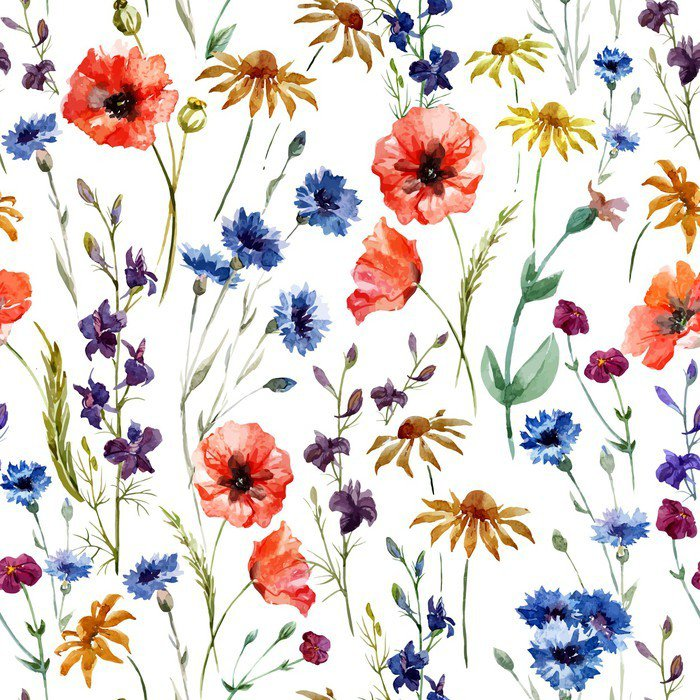 Vinylová Fototapeta Wildflowers - Vinylová Fototapeta