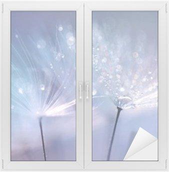 Window & Glass Sticker Beautiful dew drops on a dandelion seed macro. Beautiful blue background. Large golden dew drops on a parachute dandelion. Soft dreamy tender artistic image form.