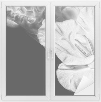 Black and white gladiolus Window & Glass Sticker