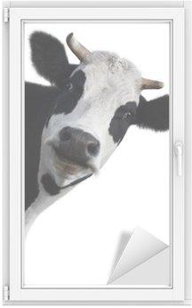 Window & Glass Sticker Cow