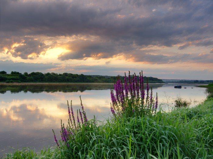 Plakat HD Wschód słońca nad rzeką - Tematy