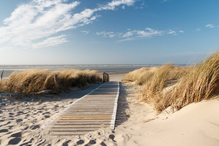 Yıkanabilir Duvar Resmi Nordsee Strand auf Langeoog - Deniz ve okyanus