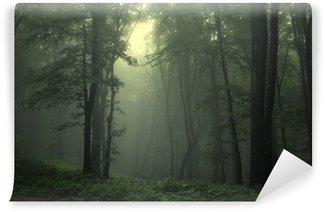 Zelfklevend Fotobehang Groene bos na regen