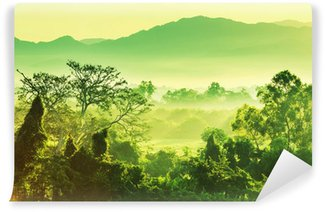 Zelfklevend Fotobehang Jungle in Mexico