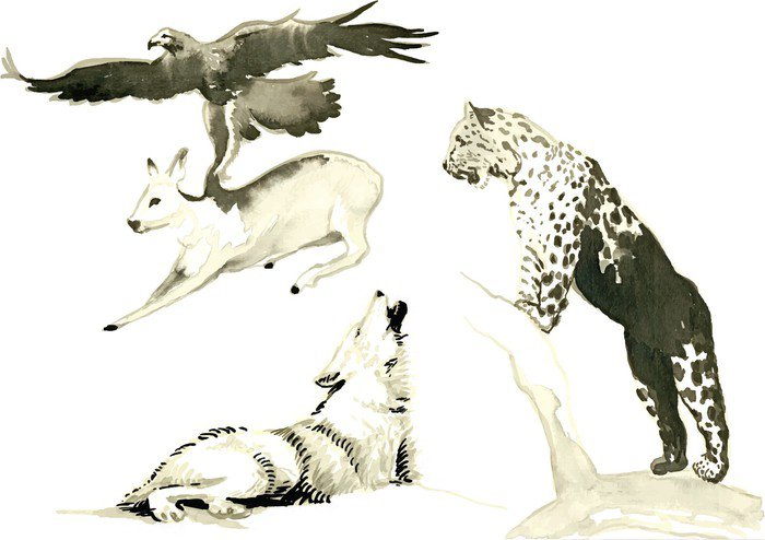 Zwierzęta - ręcznie malowane ilustracje konwertowane do wektora