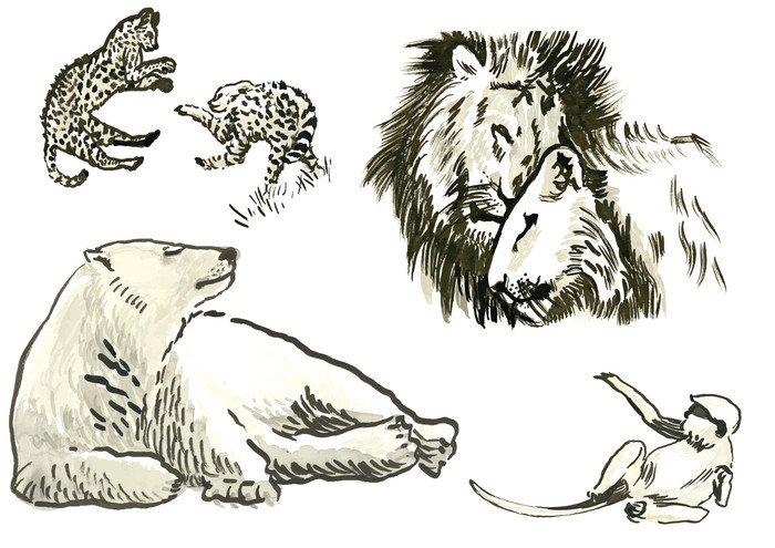 Fototapeta Vinylowa Zwierzęta - ręcznie malowane ilustracje konwertowane do wektora - Ssaki