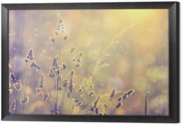 Retro niewyraźne trawa trawnik o zachodzie słońca z pochodni. Vintage fioletowy czerwony i żółty kolor pomarańczowy efekt filtra stosowane. Selektywne fokus stosowane.