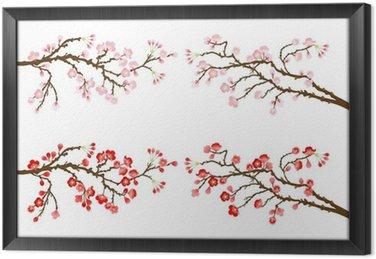 Gałęzie wiśni i śliwek