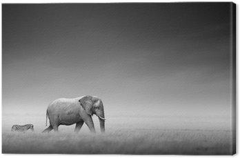 Słoń z zebry (przetwarzanie artystyczne)