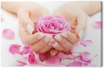 Manicure i Hands Spa. Piękna kobieta Ręce Zbliżenie