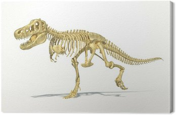 T-Rex dinosaur full skeleton, photo-realistic, scientifically co