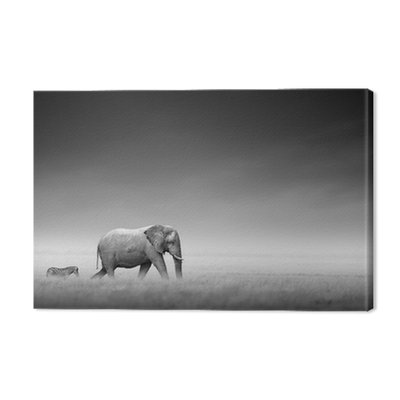 Elephant with zebra (Artistic processing)