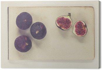 Figi leżące na arkuszach papieru rocznika - naturalna historia styl książki