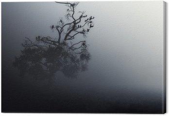 Spooky Tree Dark Night ./Halloween background.
