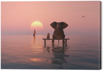Słoń i pies siedzi w środku morza