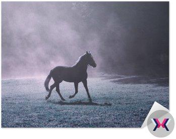 Fantasy rano światło słoneczne łąki z brązowego konia i fioletowym kolorze mgły.