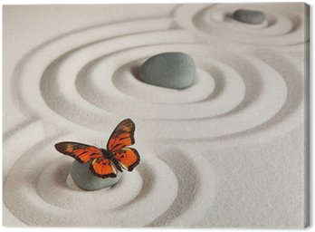 Zen kamienie z motylem