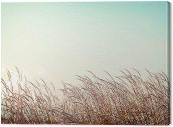Streszczenie rocznika tło natura - miękkość białe piórko trawy z nieba przestrzeni retro