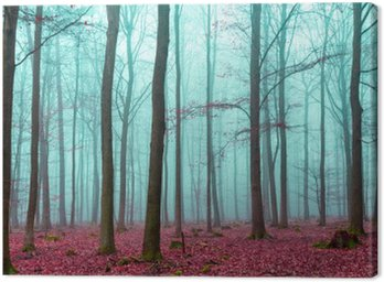 Zauber Wald w Rot und Türkis