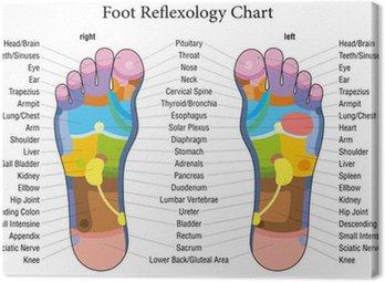 Opis wykresu refleksologia stóp