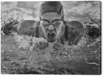 Motylkowy pływanie mistrz