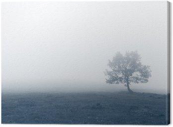 Samotne drzewo w mgle